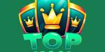 TopTally Logo
